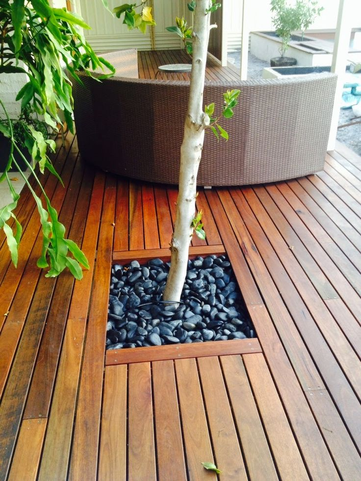 Bunter Family Blog - Spotted Gum timber deck