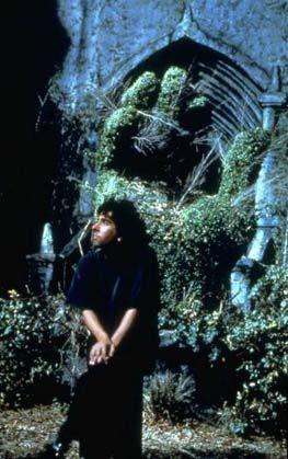 The Tim Burton Collective - Biography