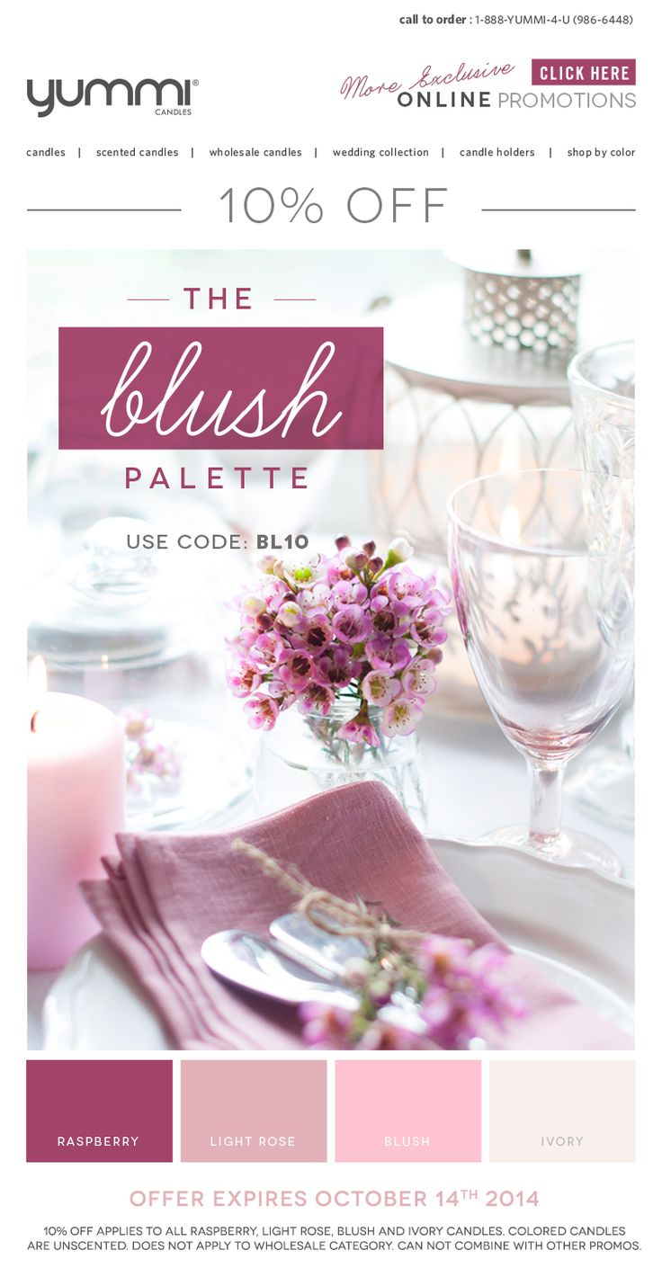 10% OFF The Blush Palette! Use Promo Code BL10 At Checkout