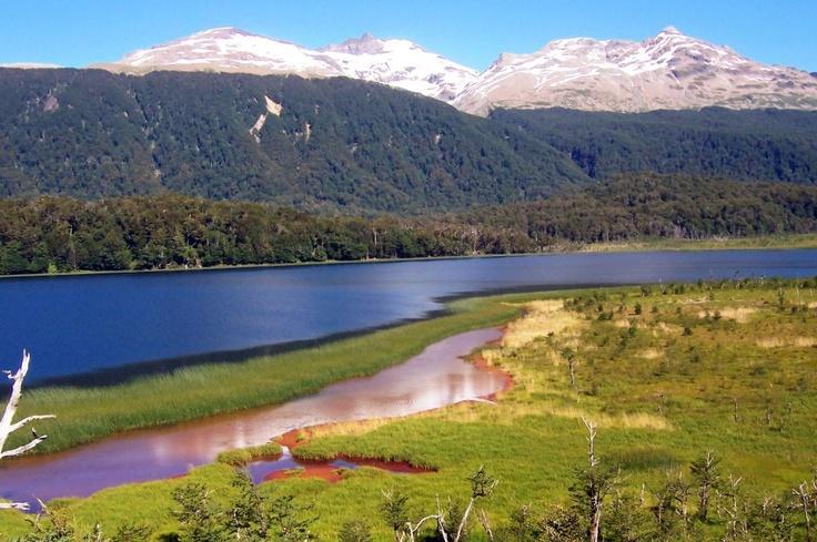Laguna Jofré - Patagonia de Aysén- Chile