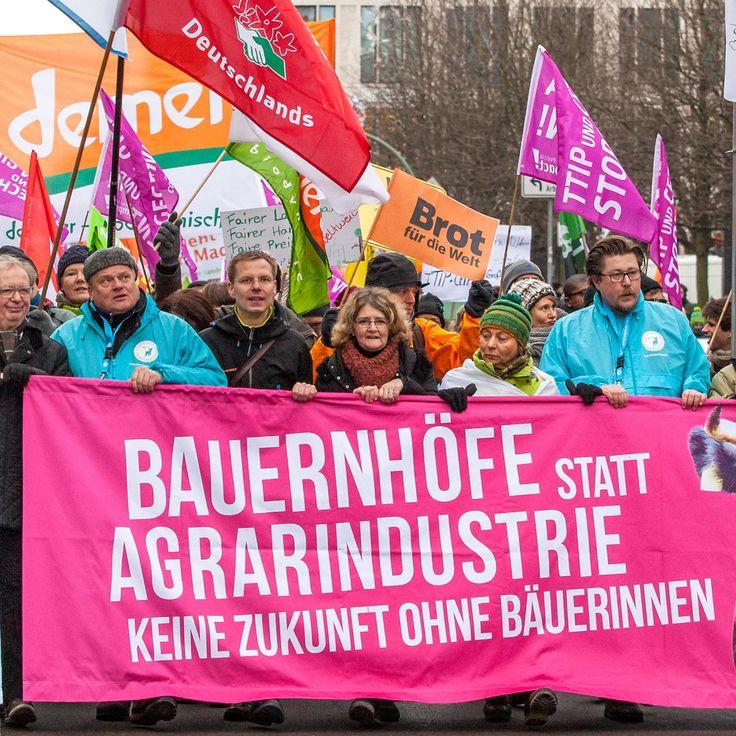 """Samstag, 20. Januar 2018, 11 Uhr """"Glyphosat – wir haben es satt!"""",tönt es durch Berlin. Tausende Menschen fluten die Straßen,hunderte Trecker fahren auf und eine riesige,tote Biene schwebt in der Luft.Die größte Agrarwende-Demo Deutschlands – das ist unsere Antwort auf Christian Schmidts Glyphosat-Manöver.5 weitere J.Glyphosat gehen auf seine Kappe.Wir sind sauer+zeigen das am 20. Januar auf der """"Wir haben es satt""""-Demo in Berlin."""