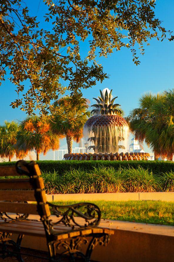 ...♥ Pineapple Fountain, Waterfront Park, Charleston, S Carolina