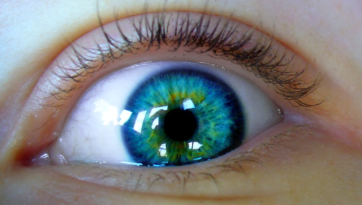 Wow! Possibly the coolest, most beautiful eye I have ever seen!