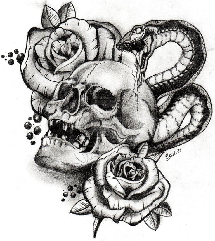10 best images about my octo on pinterest macabre octopus and skull drawings. Black Bedroom Furniture Sets. Home Design Ideas