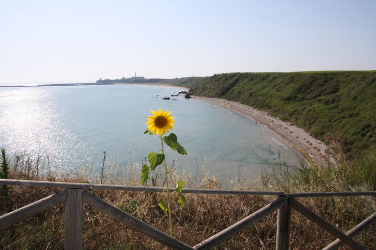 Punta Aderci Vasto  #Abruzzo #puntaderci #sun #sea #beach #nature #beatiful #Vasto #chieti #summer #adriatic #italia #puntapenna #vivoabruzzo #immobiliarecaserio #exclusiveproperty #amazing #relax #sole #pamoramicview #wonderful #mareadriatico #paradise #moments #travel #lamiacittà #riservanaturale #picture #mothernature #romantic #naturereserve #landscape #immobiliarecaserio #exclusiveproperty…