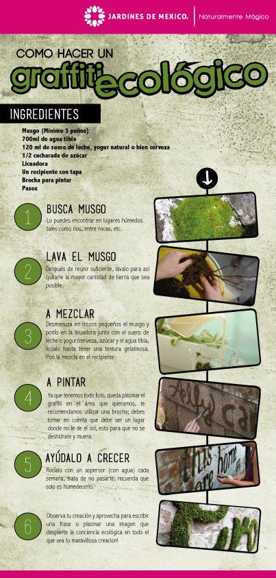 ¿Cómo hacer un graffiti ecológico?  How to make an eco-graffiti?  #JardinesDeMéxico