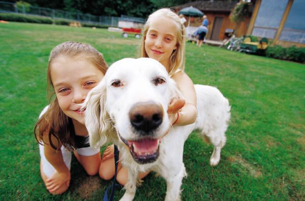 Be a responsible dog owner and read these 10 tips. Ensure that you will have a happy life with your pup.    (scheduled via http://www.tailwindapp.com?utm_source=pinterest&utm_medium=twpin&utm_content=post1067493&utm_campaign=scheduler_attribution)