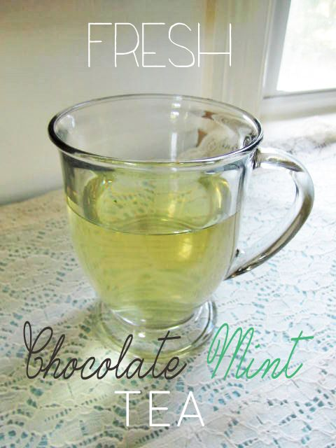 Chocolate Mint Tea using fresh mint from the garden!