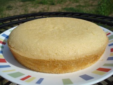 Make and share this Vanilla Sponge Cake- Gluten, Dairy, Nut and Egg Free recipe from Genius Kitchen.