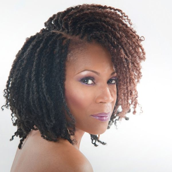 Astounding 1000 Ideas About Afro Twist Braid On Pinterest Afro Twist Short Hairstyles Gunalazisus
