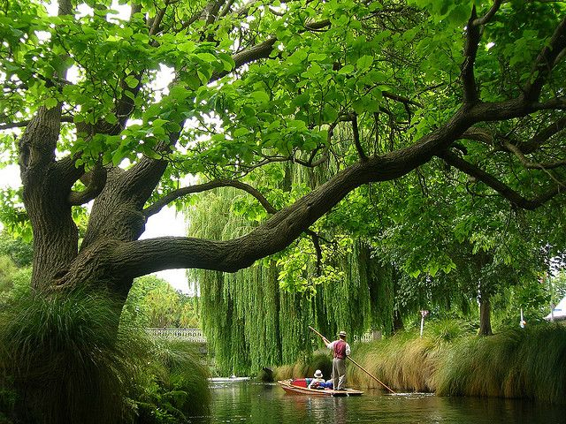 Hagley Park, Christchurch, New Zealand