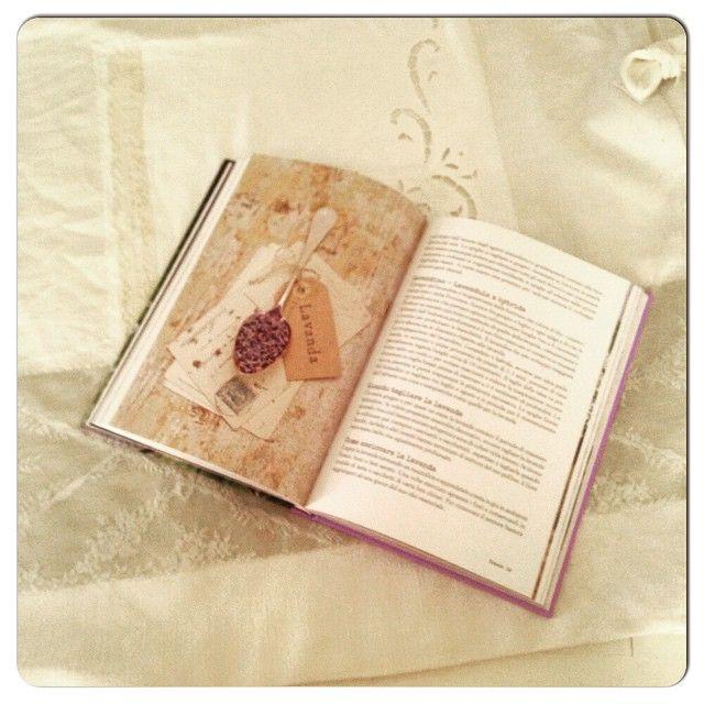 A casa di Marcella! mi prendo una piccola pausa con il mio libro preferito #buongardening @aboutgarden Read more at http://websta.me/p/1009437247261934408_39176567#VbqtlwDTbsfm8CHb.99