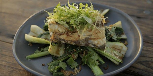 Steamed Barramundi with Asian Greens