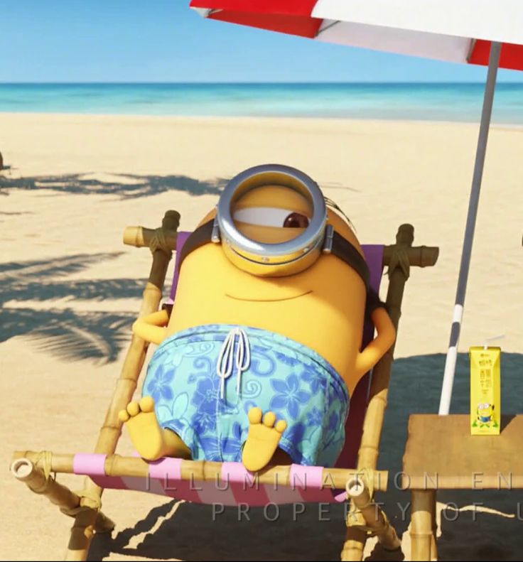 1130 best images about Minion on