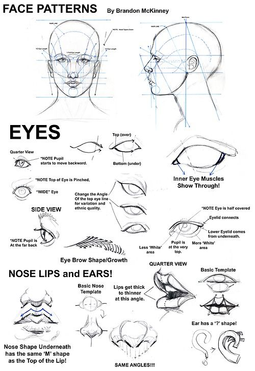 "TUTORIAL BY SNIGOM Some of the basics everybody should learn in their first art class. Once you know this it becomes so much easier to draw photorealistic faces as well as ""create"" your own faces. Good luck!"