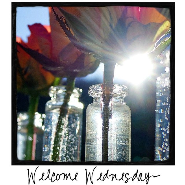 Welcome Wednesday! Sign up for my Newsletter and get a free Pinterest-sized photo in your in-box each week! http://bit.ly/AddWarmthNews