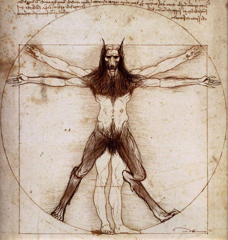 """Vitruvian Werewolf - """"Petre's hands flexed into fists at his sides and his back arched. His eyes set and his entire frame became rigid. He growled and grew and didn't care, for it was already too late. The transformation had been allowed to occur and he was out-of-control. All fists and fur, claws and fangs, he launched upon the helpless, mourning Prince entirely without mercy…"""" #DOD1 #epicfantasy #fiction #indie #series #DestinyofDragons #DOD"""