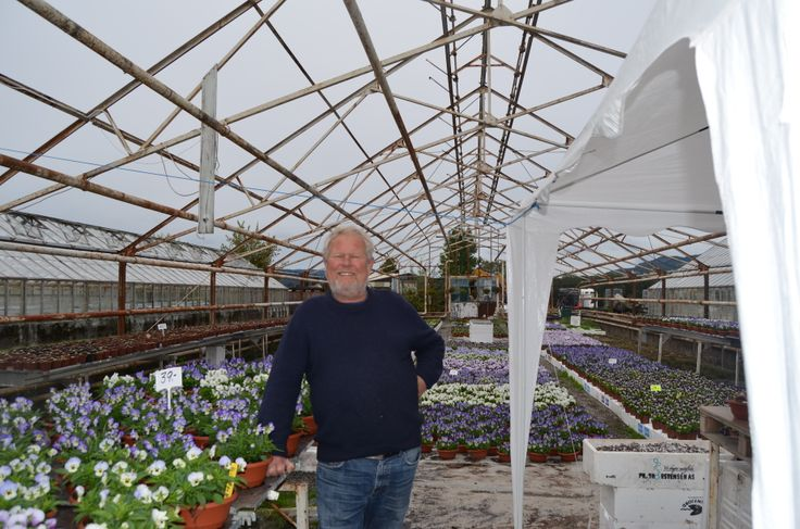Blomster-Svein Grette Gartneri Nøsteveien 120 3400 Lier N  Svein Åge Opsahl Kastanjeveien 70  3026 Drammen. N. Tlf. 94179050 www.blomste-svein.com svop@getmail.no