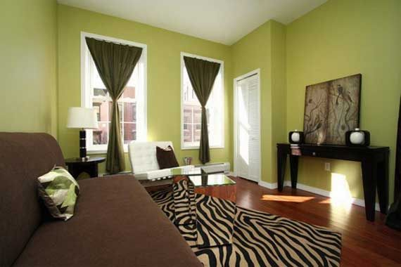 Green living room decorating ideas brown living rooms for Living room ideas with zebra rug