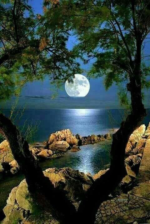 Coucher de lune dans l'eau