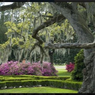 #Baton Rouge Louisiana  #Travel Louisiana USA multicityworldtravel.com We cover the world over 220 countries, 26 languages and 120 currencies Hotel and Flight deals.guarantee the best price