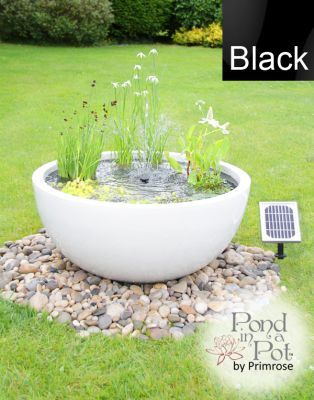 Solar Powered Pond in a Pot Kit with 72cm Black Planter and Fountain. £160 including plants, with metal grid to make child-friendly.  Good for wildlife..