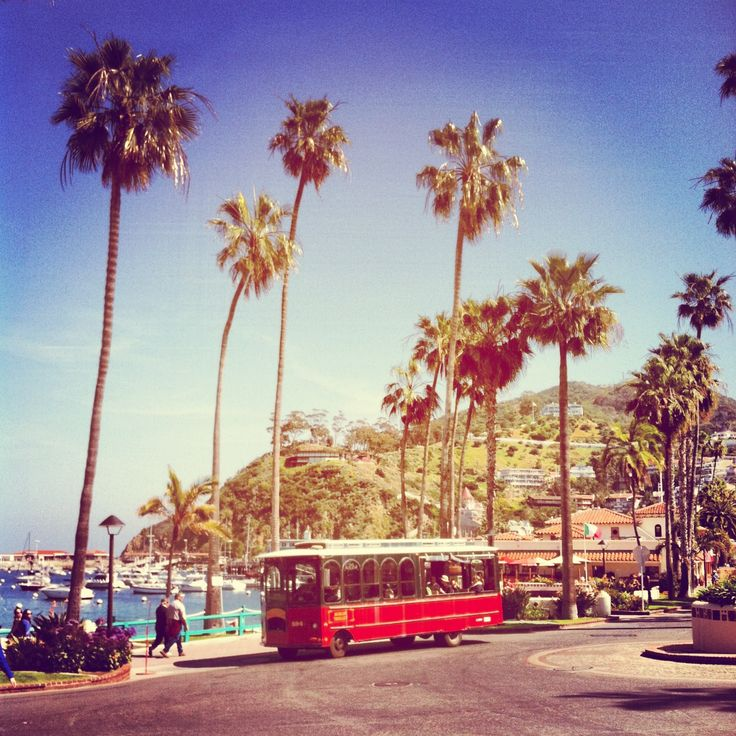 Catalina island island vacation ideas pinterest for Vacation ideas in california