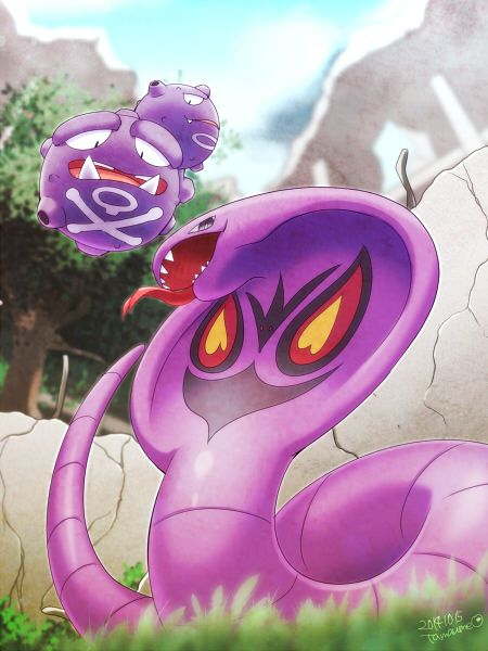 Weezing and Arbok by tamaume.deviantart.com on @deviantART