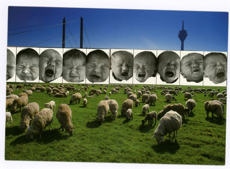 Düsseldorf_I Bambini_Le Pecorelle