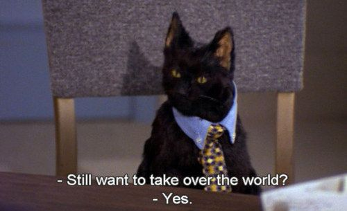 "But never give up on your worldly ambitions. | 26 Life Lessons You Learned From Salem Of ""Sabrina, The Teenage Witch"""