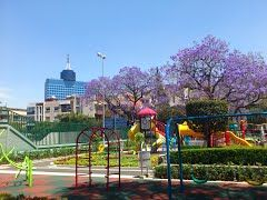 Parque Alfonso Esparza Oteo - Buscar con Google