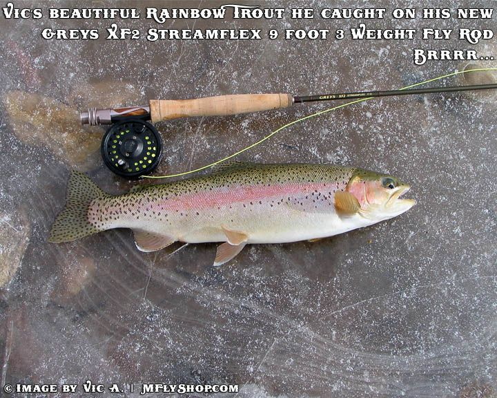 12 best fly fishing in wyoming images on pinterest for Best trout fishing near me
