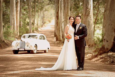 Wedding Photography, Denmark WA with karri trees and 1950s Jaguar car.