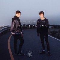 Escuchar Y Descargar Martin Garrix Ft. Troye Sivan - There For You.mp3 Descargar Musica Gratis Y Disfruta De Canciones En Linea.