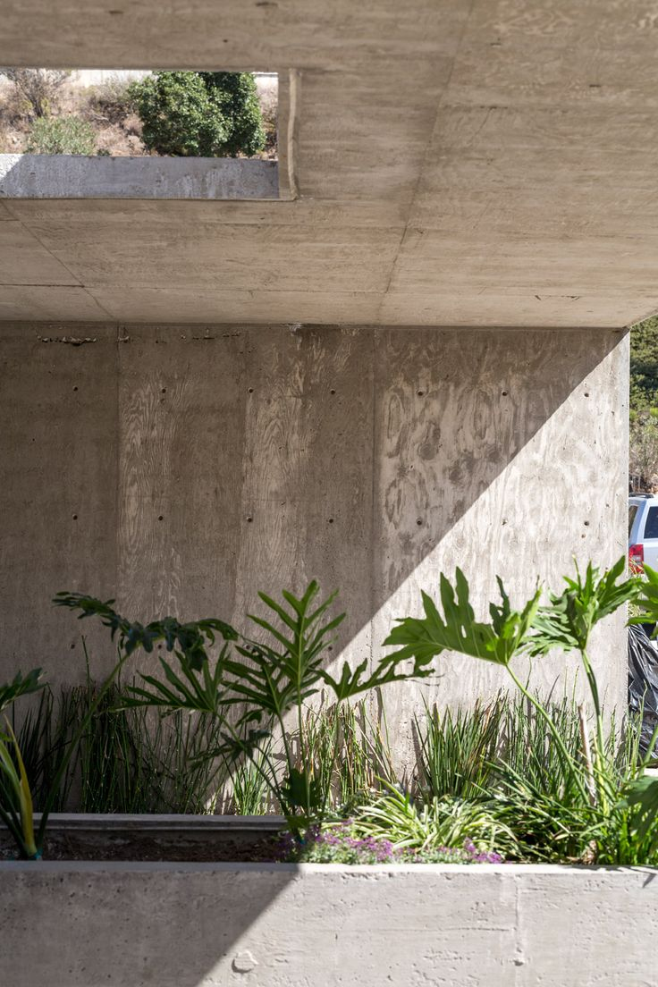 Concrete house in Mexico by T38 Studio.