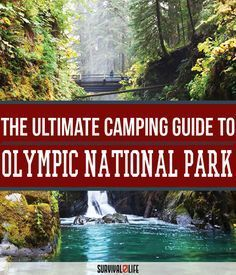 Check Out Olympic National Park Camping | Survival Life National Park Series at http://survivallife.com/2015/12/30/olympic-national-park-camping-survival-life-national-park-series/