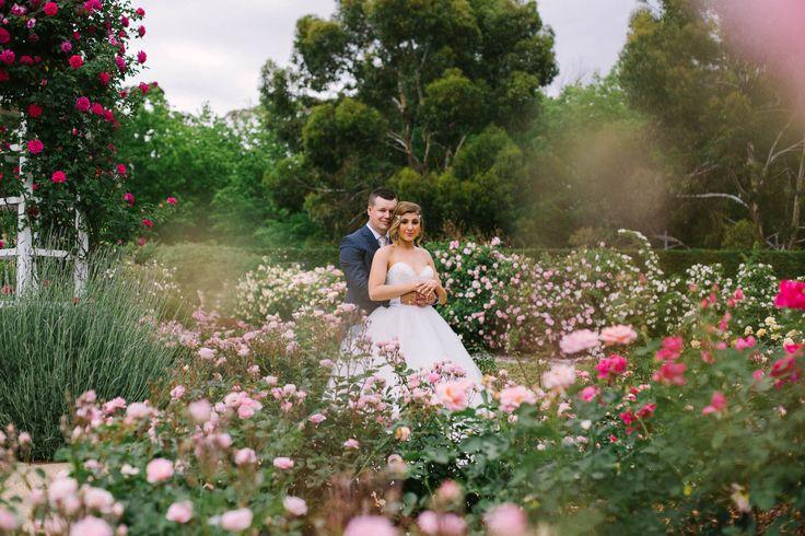 Peden Wedding Photos