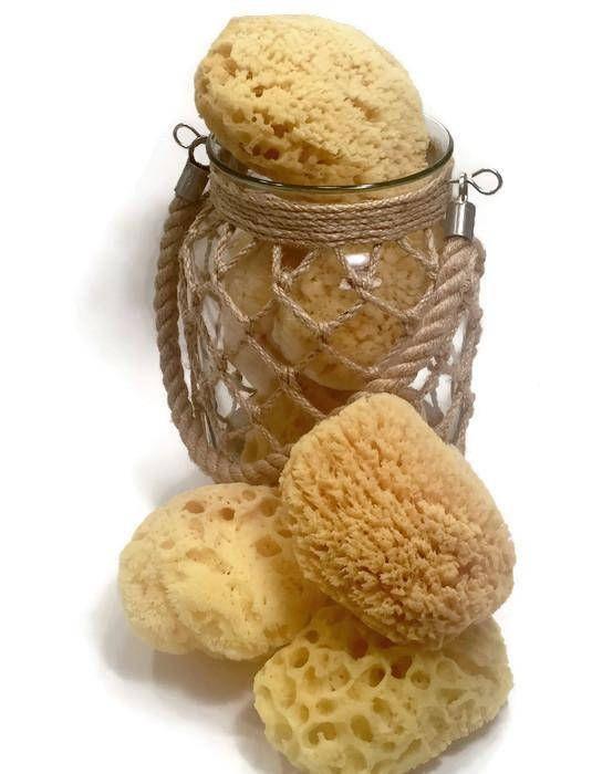 Sea Sponges  Natural Sea Sponge  Bath Sponge  Facial Sponge