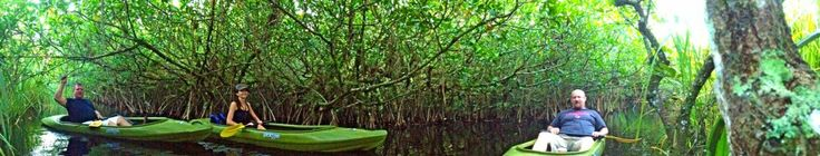 Kayak Fishing | Collier Seminole Nature Tours - catch fish and do it with 'stealth precision'!