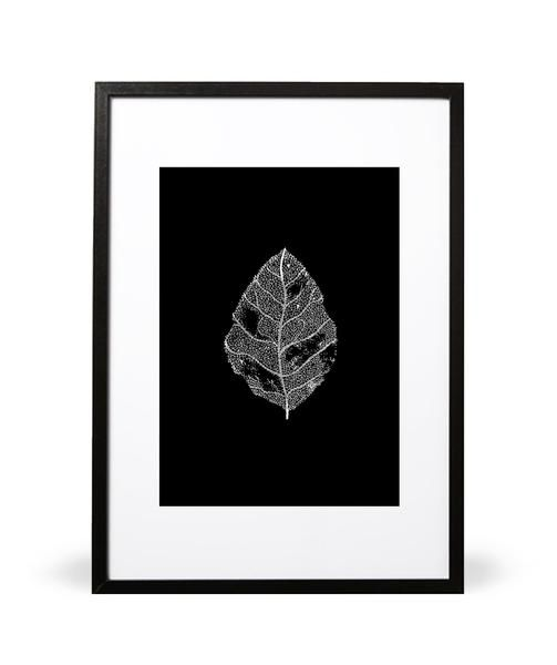 Leaf it Behind print. Embrace the beauty of now. Part of the In the Wilderness collection. Illustrated by Intricate Collections. Available in either A4 (21 x 29.7cm) or A3 (29.7 x 42cm). Printed onto 280gsm textured FSC paper stock. Embossed with Intricate Collections logo at bottom right. Original artwork by Intricate Collections.