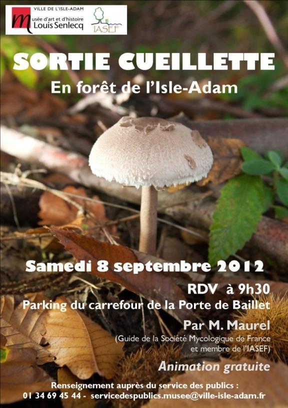 Sortie cueillette en forêt de l'Isle-Adam, 8 septembre 2012  http://www.pariscotejardin.fr/2012/09/sortie-cueillette-de-champignons-en-foret-de-l-isle-adam-val-d-oise/