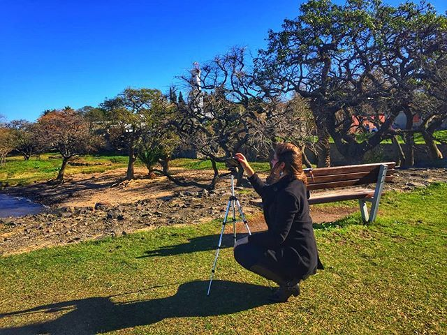 O clima o dia lindo e o cenário inspira muitas fotos de viajantes que visitam Colônia de Sacramento no Uruguai. Na  nossa viagem na férias de julho de 2016 em pleno inverno aproveitamos cada momento para registrar e curtir a belezas da pequena cidade histórica. Lá no fundo escondido entre as árvores está o Farol ícone de Colônia e um dos pontos de maior visitação. Se quiser saber mais contamos tudo lá no blog (link na bio). . .  #colonia #coloniadelsacramento #uruguai #uruguay #uruguaytotal…