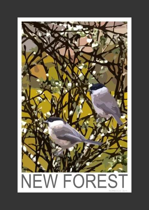 Marsh Tit and Willow Tit in the New Forest (Art Print)