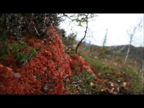 Norway,Tinn kommune (Rjukan) 2005 - 2013 - YouTube