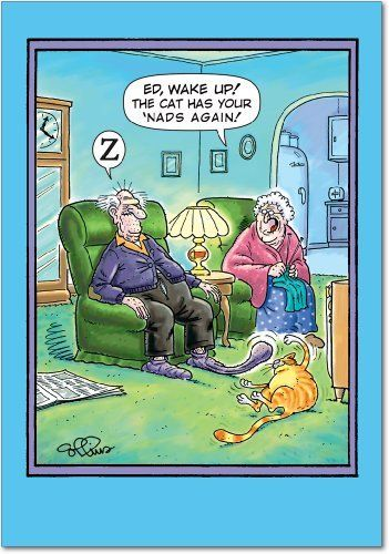 36 best 30th birthday jokes images on pinterest birthdays ha ha cat has nads birthday greeting card by nobleworks 295 do you need to send someone a funny card do your friends love funny jokes m4hsunfo