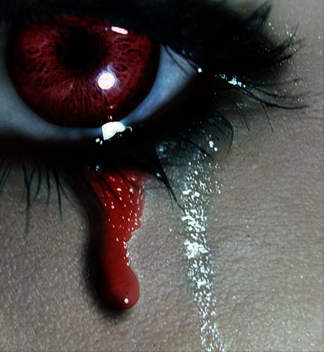 """""""The pain of living is eclipsed by the pain of missing, streaming tears of blood for you""""..... He's going to find her! Roses at Dusk http://www.amazon.com/Roses-Dusk-Dem…/…/ref=pd_sim_kstore_5…"""