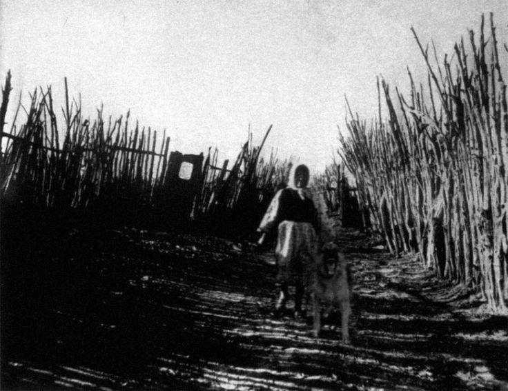 L'ultima fotografia di Charlie Noonan (Mistero risolto)