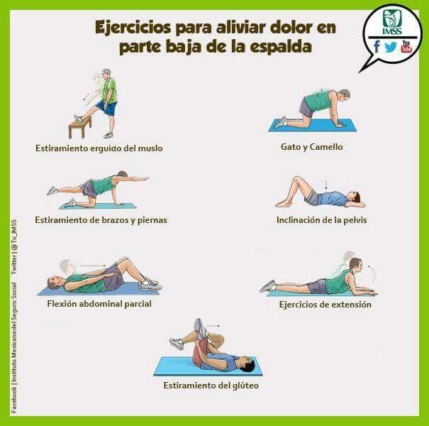 Resultado de imagen de estiramientos para el dolor de espalda