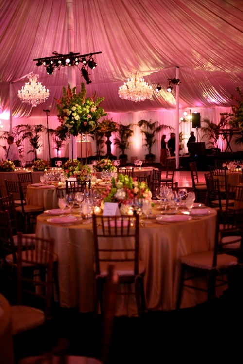 @ Sonia Read-Inside tent..with less green, more gold, hints of deep red and maybe an orangish color...no weird flowers hanging.. but love the palms in the background..more friendly lighting..there! you've got your answer..fork it up!! $$$ ;)