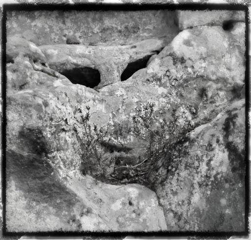 Fantômes du rocher du mont Pigeon  Ghost on the rocks at mont pigeon - Fere en Tardenois - Aisne